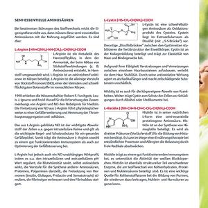 Protein-Amino Multi-Synergie Vita 12