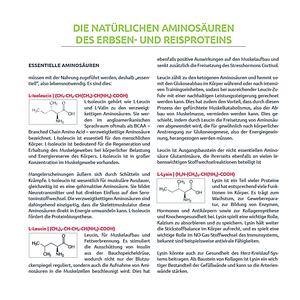 Protein-Amino Multi-Synergie Vita 9